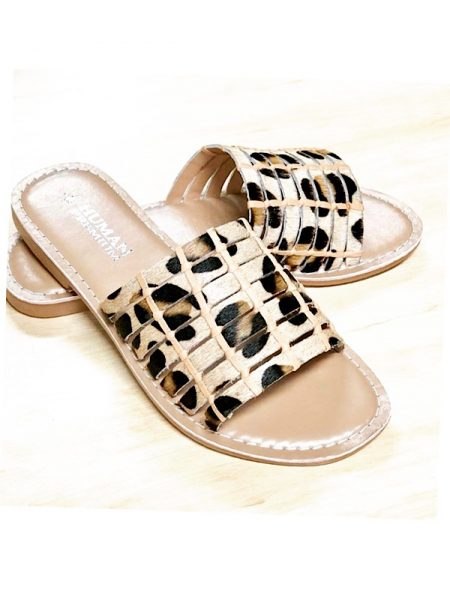 Leopard slides front view
